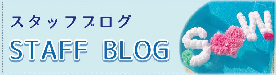 湘南 鎌倉 箱根で結婚式をお探しなら湘南プレミアムウェディング スタッフブログ