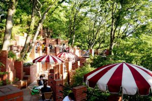 ☆スタッフイチオシ☆鎌倉の絶景おすすめカフェ 自然あふれる癒しコース