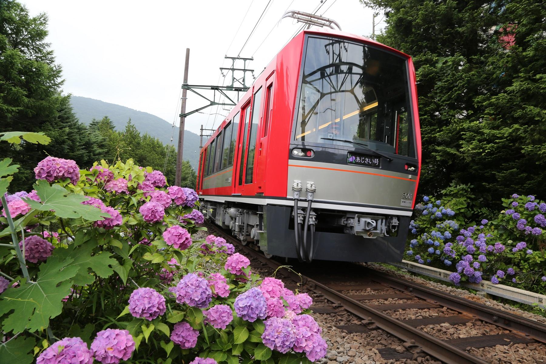 貸し切り列車アレグラ号で、二人の未来に出発進行!箱根登山電車ウェディング♪