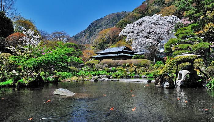 【吉池旅館】箱根神社×宿泊付きプラン