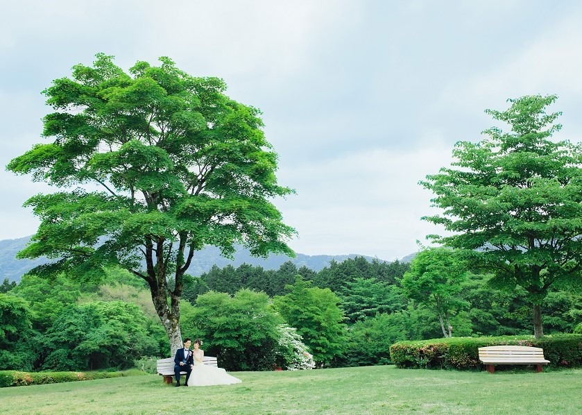 小田急レイクホテル<br/>フォトウェディングプラン