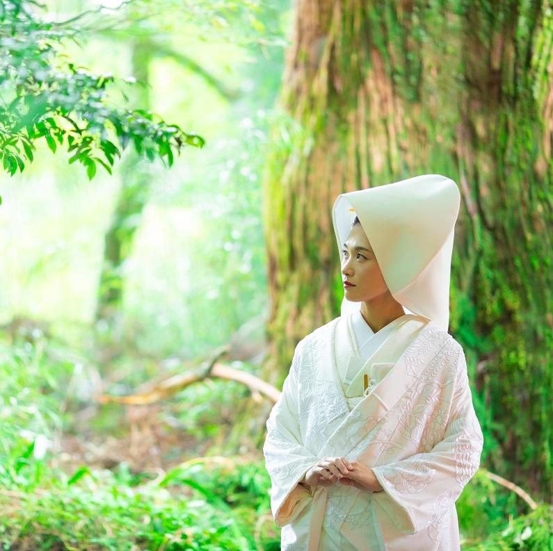 【箱根神社】挙式プラン おすすめポイント