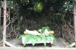 植物デコレーション