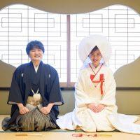 来宮神社結婚式×温泉旅行♥