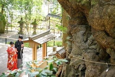 【来宮神社】<br>神前式×食事付きプラン